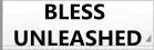 BLESS UNLEASHED rmt|BLESS UNLEASHED rmt|blessunleashed rmt|blessunleashed rmt
